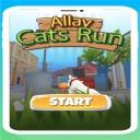 小巷猫跑ios版