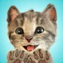 我最喜爱的猫猫ios版